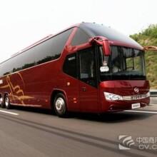 天天发车(从慈溪到新县的客车欢迎致电)图片