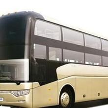 新野,宁波直达/宁波到新野的大巴车时刻表图片