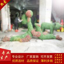 厂家定制各类海豚绿雕创意海洋生物雕塑料造型五色草雕