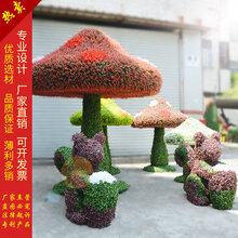 仿真绿雕松鼠蘑菇造型植物雕塑松鼠蘑菇仿真动物造型蘑菇形状厂家