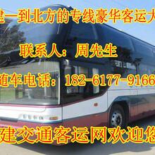 启东到胶州客车/大巴车/回家班车图片