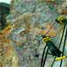山東兗州土石方開挖分裂機多少錢
