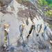 黑龙江抚远石材场开采破石头分裂器能破多深