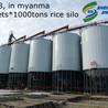 鋼板倉廠家供應大型糧食儲罐TCZK08210型號500噸玉米倉