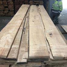 德国金威木业进口榉木毛边板实木板材B级26/32mm家具板地板料木料批发图片