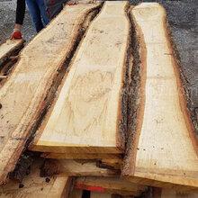 德国金威木业欧洲白橡橡木木板材毛边板实木板材ABC级图片
