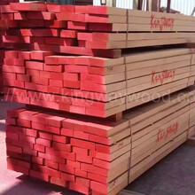 德國金威木業進口羅馬尼亞櫸木直邊板長中短實木木方木板AB級圖片