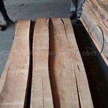 德国金威木业进口木材欧洲榉木实木板板材毛边木板榉木山毛榉水青冈图片