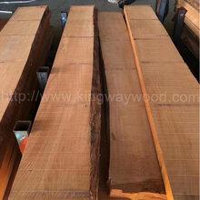 德国金威木业进口榉木欧洲榉木实木板材实木板毛边榉木AB级木料图片