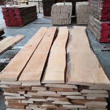 德国金威木业进口木材欧洲榉木A/B毛边板材实木木板榉木月供60柜图片
