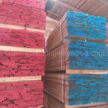 德国金威木业欧洲进口实木欧洲榉木板材直边实木板中长料图片