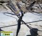 黔西南采石場哪種方式開采石頭產量高調試視頻