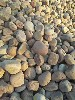 苏州相城区鹅卵石出厂价格