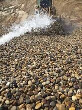 临沂罗庄5-8厘米耐酸抗腐蚀化工厂用天然鹅卵石厂家批发图片