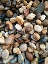 无锡锡山鹅卵石滤料卵石滤料砾石滤料承托层8-16mm一吨多少钱图片