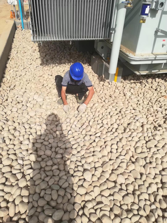 沧州鹅卵石沧州园林绿化鹅卵石生产供应商