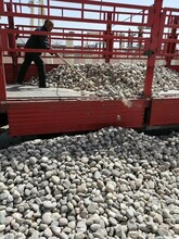 保定博野县鹅卵石保定博野县变电所鹅卵石出厂价格图片