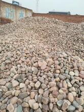 商丘睢县鹅卵石商丘睢县变电站用垫底鹅卵石生产厂家图片