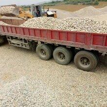三门峡卢氏县鹅卵石变电所鹅卵石园林绿化鹅卵石产地直销图片