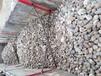 巴彦淖尔鹅卵石5-8cm净水处理鹅卵石垫层价格
