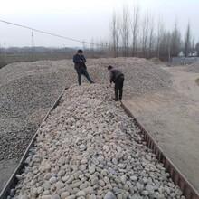 亳州鹅卵石变电所鹅卵石化工厂鹅卵石厂家批发图片