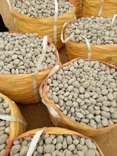 亳州鹅卵石变电所鹅卵石变压器鹅卵石厂家批发图片