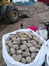 滁州南谯区鹅卵石人工水系铺设鹅卵石水处理鹅卵石生产销售图片