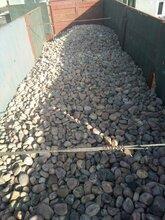 邯郸鹅卵石滤料变压器鹅卵石公司地址