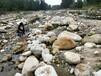 莆田包头人工湖铺设鹅卵石草坪石水冲石生产基地