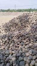 景德镇鹅卵石滤料变电所鹅卵石用途图片