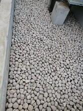 大观鹅卵石滤料净水处理鹅卵石垫层供应图片