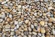 宿松县鹅卵石滤料人工水系铺设鹅卵石联系电话