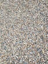 龙子湖天然鹅卵石污水处理鹅卵石滤料圆又圆图片
