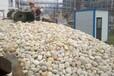 淄博市鹅卵石5-8cm变电站鹅卵石产地批发