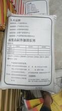 怒江雙快水泥供應廠家南漿科技圖片