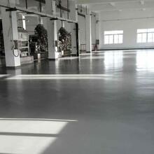蒸湘区聚合物耐碱砂浆化工地坪材料直销图片