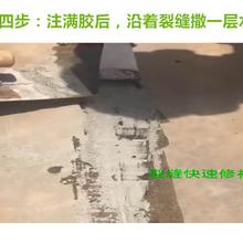 界首混凝土裂缝修补胶生产厂家图片