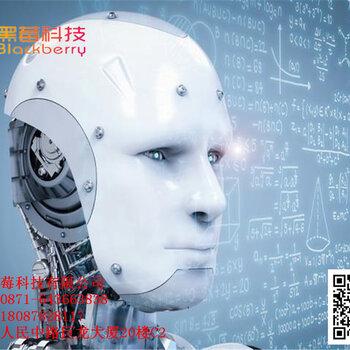 浙江百应电话机器人系统能够使用标准话术,不