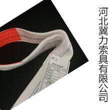 100%滌綸吊裝帶支持定做35噸50噸工業吊裝帶—冀力索具圖片