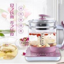 厂家直销多功能自动高硼硅玻璃养生壶煮茶壶煎药壶烧水壶炖品壶图片