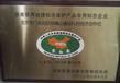 北京京白梨