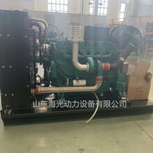 濰柴六缸WP7D216E310電控三階段發電柴油機圖片