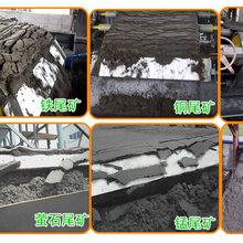 洗煤厂浓缩式煤泥脱水机煤泥压滤机高效率带式压滤机图片
