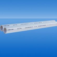 山东潍坊圣大管业供应批发铝塑PP-R复合管给水管图片