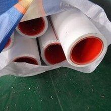 山东潍坊圣大管业塑铝稳态PP-R管给水管批发图片