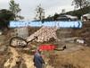 裝石頭生態綠格網廠家防洪護坡生態綠格網泥石流治理