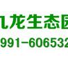 乌鲁木齐九龙生态园墓地销售中心