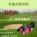 振鵬草坪機價格草坪機廠家汽油除草機手推式割草機起草皮機