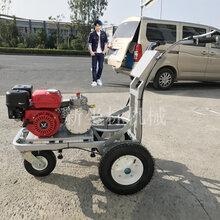 简易款冷喷划线机小型手推单头标线机小区驾校画线设备图片