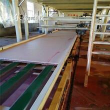 市场优质玻镁板设备秸秆玻镁板设备玻镁保温板设备图片